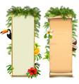 tropical boards vector image vector image