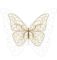 Beautiful butterfly with plant pattern vector image vector image
