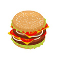 Hamburger isometrics Sandwich of patties and cut vector image