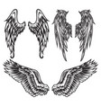 wings bird feather black white tattoo set 3 vector image vector image