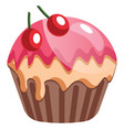chocolate cupcake with cherries on white vector image vector image