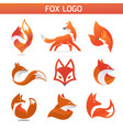 creative fox animal vector image vector image