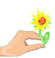 female hand with sunflower vector image