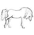 horse sketch vector image vector image
