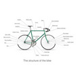 Infographic of the structure of bike vector image vector image