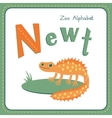 Letter N - Newt vector image vector image