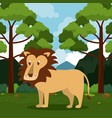 lion safari animal vector image vector image