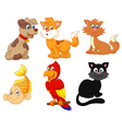 Cartoon character pets vector image vector image