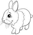 cartoon dwarf rabbit animal character coloring vector image vector image