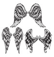 wings bird feather black white tattoo set 8 vector image vector image