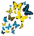 Butterflies background vector