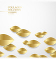 eco golden leaf isolated on white background vector image vector image