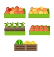 Set of Boxes with Fruits vector image vector image