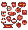 set retro vintage badges and labels eps10 vector image vector image