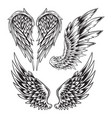 wings bird feather black white tattoo set 10 vector image vector image