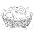 basket with tomatoes contours vector image vector image