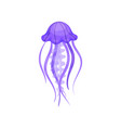 flat verctor icon of bright purple jellyfish vector image vector image