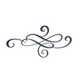 hand drawn border flourish separator calligraphy vector image vector image
