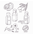 Healthy oil set in outline style Coconut walnut vector image