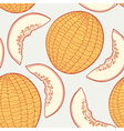 Melon seamless pattern vector image vector image