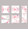 romantic collection of greeting cards with fancy vector image vector image