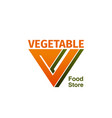 vegetable food store badge vector image vector image