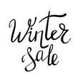 winter sale typographic poster vector image