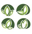 Set Of Green Leaves Design Elements vector image