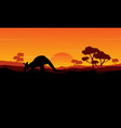 beauty silhouette of kangaroo landscape vector image vector image