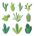 cartoon cactus set set bright cacti and vector image