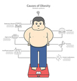 causes of obesity and fat man vector image