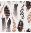 Decorative feathers seamless vector image vector image