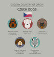 dogs by country of origin czech dog breeds vector image vector image