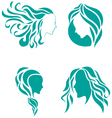 Hair fashion icon symbol of female beauty vector image