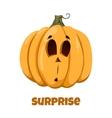 Pumpkin for Halloween Emotions Surprise vector image vector image