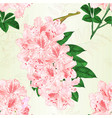 seamless texture flowers light pink rhododendrons vector image vector image