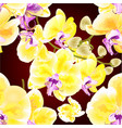 seamless texture orchid phalaenopsis golden vector image vector image