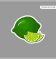 cartoon fresh lime isolated sticker vector image vector image