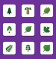 flat icon bio set of timber park acacia leaf and vector image vector image