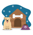 pet little dog house and bowl with food vector image vector image