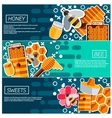 Set of Horizontal Banners about honey vector image