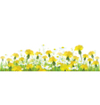 spring flower isolated vector image vector image