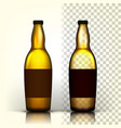 beer bottle alcohol label bar flyer vector image vector image