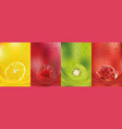 fruit juice lemon raspberry kiwi pomegranate vector image vector image