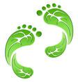 green leaf carbon eco footprints vector image vector image