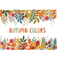 horizontal banner with autumn colorful plants vector image vector image