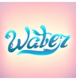 Turquoise Water Day logo lettering vector image vector image