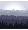 Blue Fog Coniferous Forest and Mountains