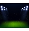 Football Stadium at night with spotlight vector image