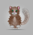 a fluffy cat isolated on gray background vector image